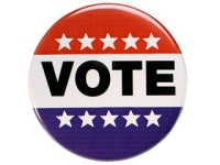 vote-pin